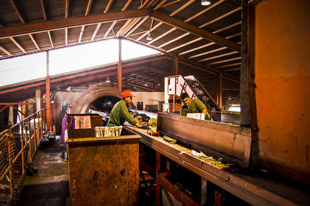 recycling center: selection and separation of garbage, men and women working at recycling center