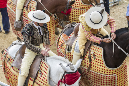 picks on horseback, bullfight in Spain