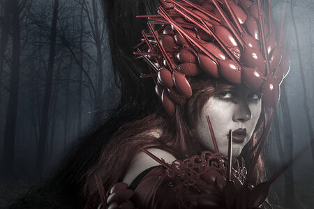 valkyrie: Viking warrior in a dark forest, valkyrie Stock Photo