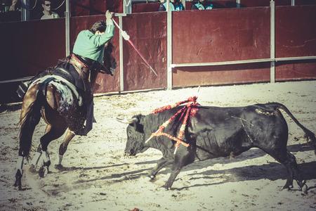 killing, bullfight, traditional Spanish party where a matador fighting a bull photo