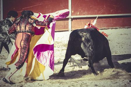 toreros, bullfight, traditional Spanish party where a matador fighting a bull photo