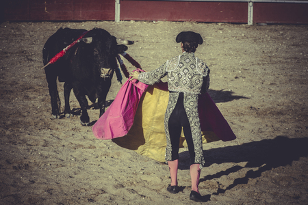 culture bullfight, traditional Spanish party where a matador fighting a bull