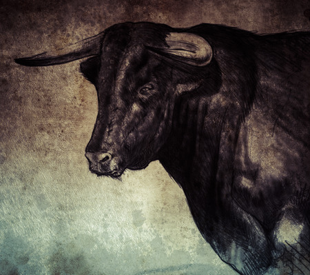 Sketch made with digital tablet of spanish bull on vintage paper, handmade illustration Stock Photo