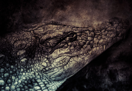 Illustration made with digital tablet, crocodile illustration