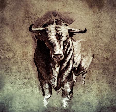 spanish bull: Sketch of tattoo art, spanish bull, dangerous bull with beaked horns on vintage paper, handmade illustration