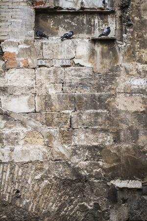 abandoned warehouse: textured stone wall, Spanish city of Valencia, Mediterranean architecture