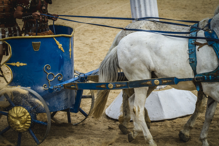horse pull: Race, chariot race in a Roman circus, gladiators and slaves fighting