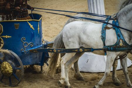 horse pull: chariot race in a Roman circus, gladiators and slaves fighting