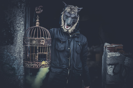 animal woman: Scary, man with mask wolf and lamp with colored smoke