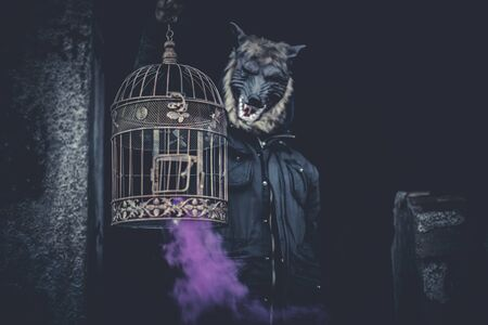 black and white wolf: Scary, man with mask wolf and lamp with colored smoke