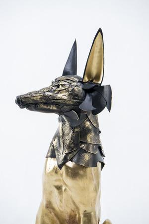 anubis: sculpture of the Egyptian god Anubis, gold figure and black jackal
