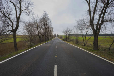 on the lonely road: lonely road, desolate landscape with ruins on a cloudy day Stock Photo