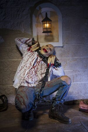 psycho: psycho, Man chained with blood and knife, has a severed leg blood