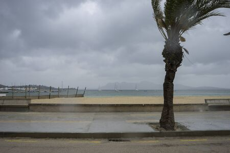 without people: Mallorca beach with stormy sky, seashore without people