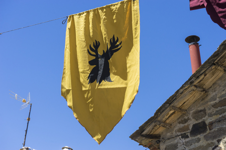 cobblestone street: Knight, shields and medieval coats of arms in a traditional fair in Zamora, Spain