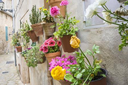 vacation, flowerpots street in the tourist island of Mallorca, Valdemosa city in Spain Stock Photo