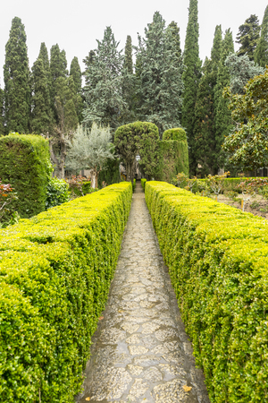 Labyrinth of green shrubs in the city of Valldemossa in the Balearic Islands Spain