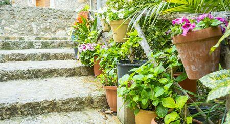 flowerpots street in the tourist island of Mallorca, Valdemosa city in Spain