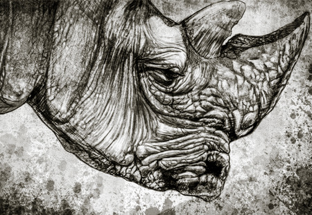 Sketch made with digital tablet of rhino head on vintage paper, handmade illustration