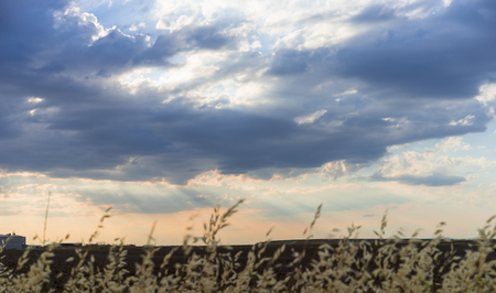 Cropfield Sky with clouds and sunlight at sunset. colorful and cheerful, wallpaper or texture
