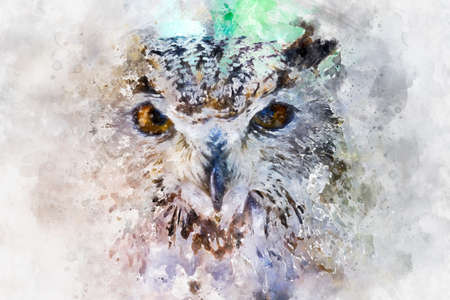 watercolor, beautiful owl with intense eyes and beautiful plumage