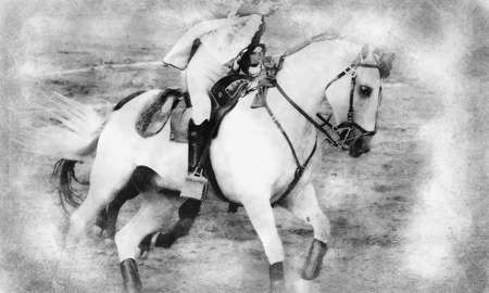 Beautiful white horse in bullring, bullfight in Spain black and white drawing Standard-Bild