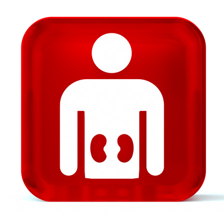 kidney: Glass button icon with white health care sign or symbol Stock Photo