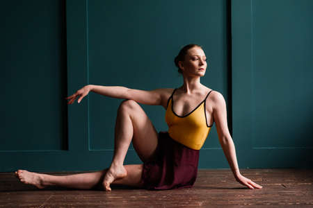 Beautiful young female classical ballet dancer on pointe shoes wearing leotard and skirt on a studio background Imagens