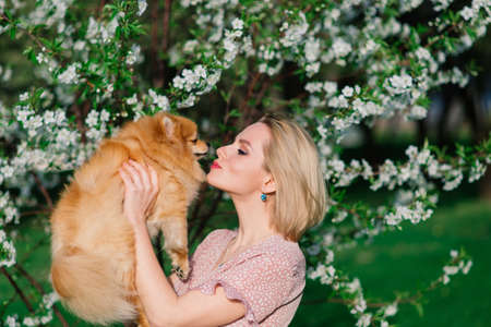 Attractive young woman holding dog spitz outside and smiling. Concept about friendship between people and animals.