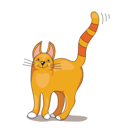 strippad: Vector Illustration of Red stripped Cat on the white background Illustration