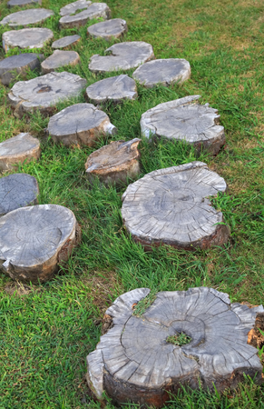 Decorative path across the lawn composed of stumps