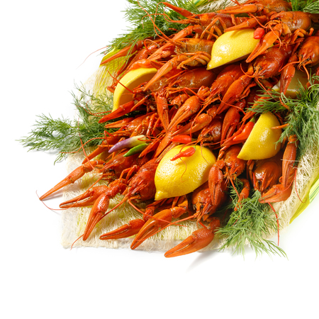 Bright red boiled crawfish with dill, lemon and paprika on a white background