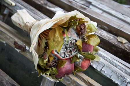 Bunch of rotten fruit and wilted flowers Stock fotó