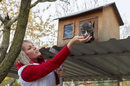 Woman feeds from the palm of a gray cat sitting in her wooden house. 版權商用圖片