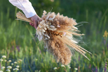 Bouquet of wild dried flowers in a female hand against a background of a green meadow.