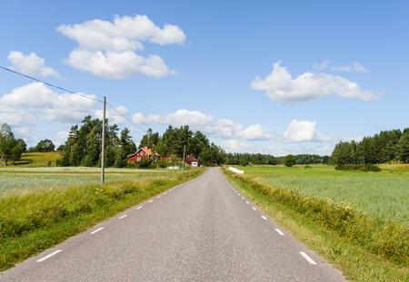 Beautiful Swedish road on a summer day