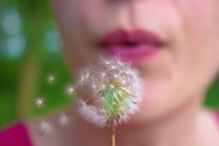 blowing dandelion: A young woman blowing in dandelion Stock Photo