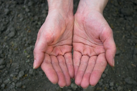 protection of arable land: Female hands over the fields in the form of holding