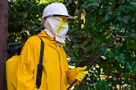 Man in a protective suit spraying plants against pests, Disinfection, photography
