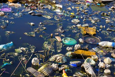 Water pollution: Sông bị ô nhiễm với rác thải khác nhau và các thùng rác, con sông bị ô nhiễm, nhiếp ảnh