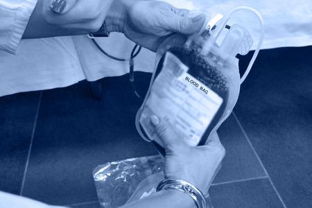 Blood bag in the hands of nurses ; Bag of blood in the hands of nurses