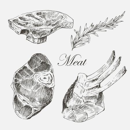 벡터 스테이크 고기 손으로 고추와 로즈마리 그리기. 상세한 잉크 식품 일러스트 일러스트