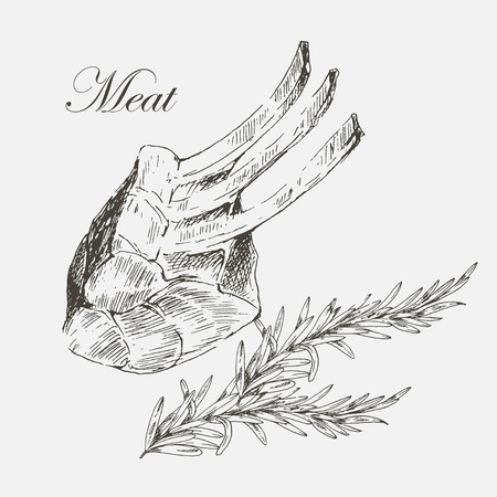 roast lamb: vector steak meat hand drawing with pepper and rosemary. detailed ink food illustrations
