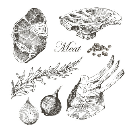 t background: vector steak meat hand drawing with pepper and rosemary. detailed ink food illustrations