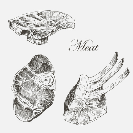 t bone steak: vector steak meat hand drawing with pepper and rosemary. detailed ink food illustrations