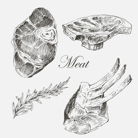 costilla: filete de carne de vectores dibujo con pimienta y romero mano. Ejemplos de alimentos de tinta detallada Vectores