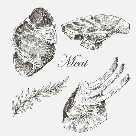 pork ribs: vector steak meat hand drawing with pepper and rosemary. detailed ink food illustrations