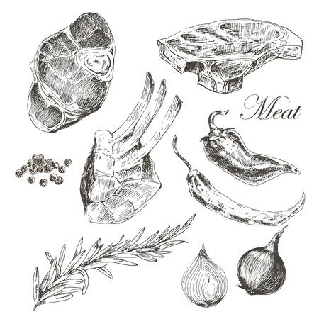 saucisse: vecteur steak de viande dessin avec du poivre et de romarin main. illustrations alimentaires d'encre détaillée