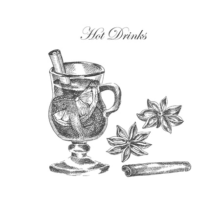 anise: vector hand drawn ink sketch of mulled wine, cinnamon, anise. detailed food drawing for autumn illustrations