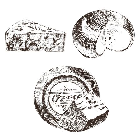 vector cheese sketch drawing designer template. farm food collection. hand drawn dairy products Illustration